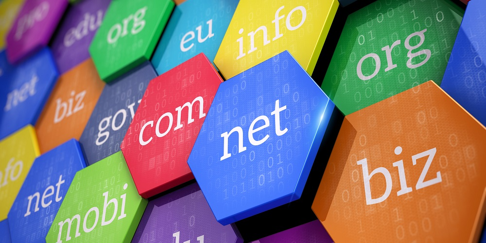 domain name security, CSC