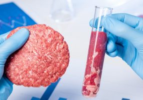 Cultured Meat, lab grown meat