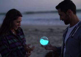 PyroFarms, bioluminescence